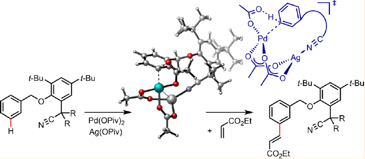 193.Palladium-Catalyzed Meta-Selective C−H Bond Activation with a Nitrile-Containing Template,Computational Study on Mechanism and Origins of Selectivity