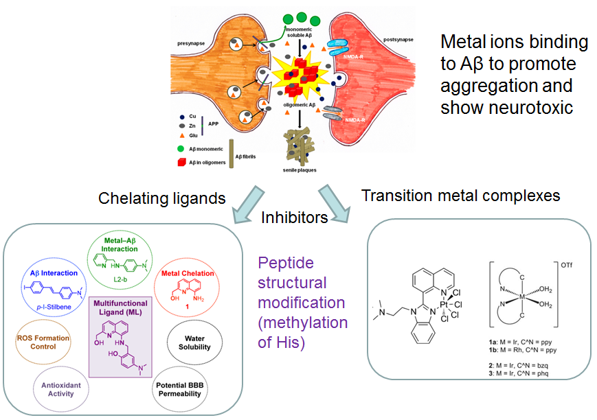 20140411_Song Li-Juan_Transition Metal-based Potential Therapy for Alzheimer's Disease