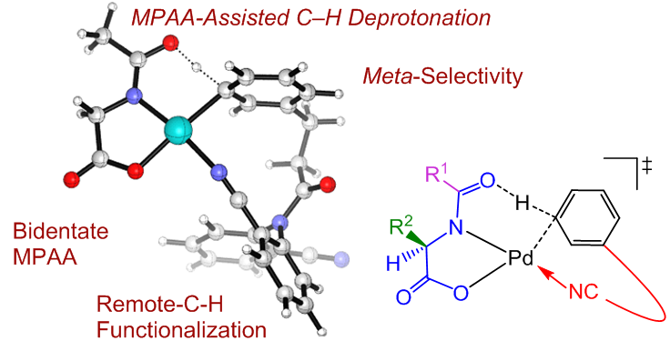 JACS again, Congratulations to Gui-Juan, Yun-Fang, Ping, and Tian-Yu!