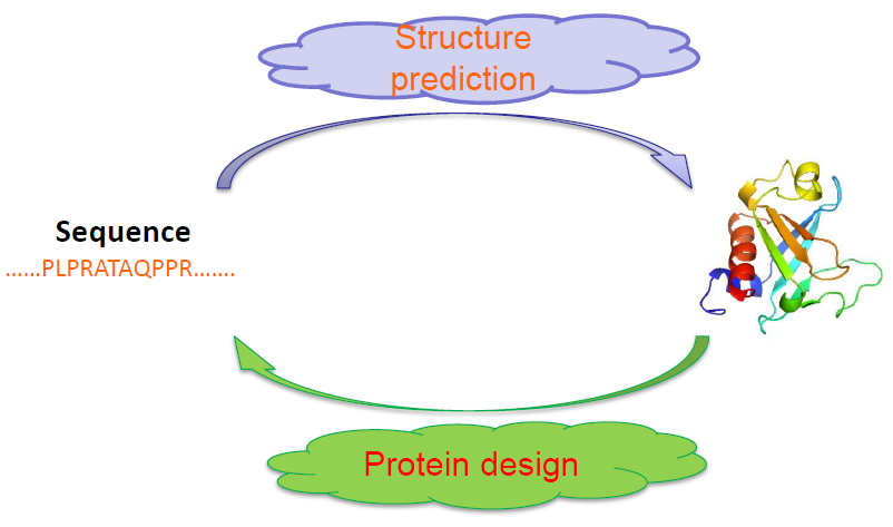 20141017_Zou Xu-Dong_Nonnatural protein-protein Interaction-pair Design